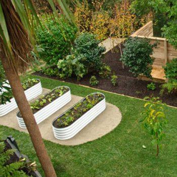 rectangular-garden-beds